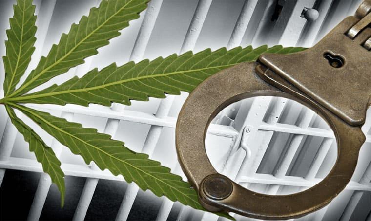 Защита по делам о наркотиках. Услуги адвоката по делам о наркотиках